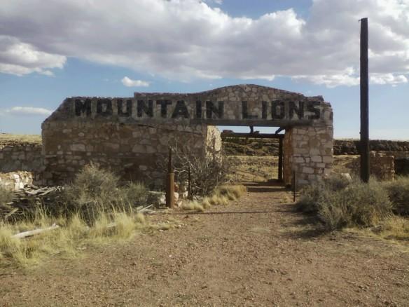MountainLions